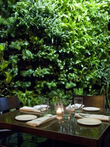 Original_Robert-DiGiacomo-Coeterie-Room-Inside-Living-Wall_s3x4_lg